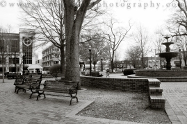 JTestPhotos-2811-2
